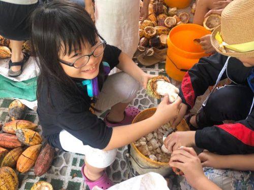 dã ngoại cho bé cuối tuần vườn cacao